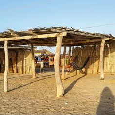 Spent longer than expected at the desert in Cabo de la Vela while waiting to go to Punta Gallinas. El Cabo wasn't the most stunning, but it was a great time Hammocks, Places Ive Been, Pergola, Travel Photography, Deserts, To Go, Outdoor Structures, Beach, Instagram Posts