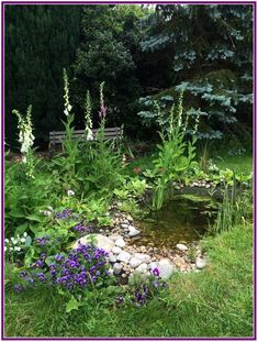 29+ attract wildlife to your garden pond 00001