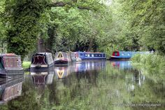 River Wey by Keith Nisbet, via Flickr - I have never found anywhere quite so dreamy as the River Wey in the late afternoon, watching the narrowboats pass through the locks while the sun peaks through the trees.