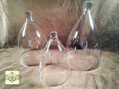 Glass Dome - Small Bell Jar Cloche - 8