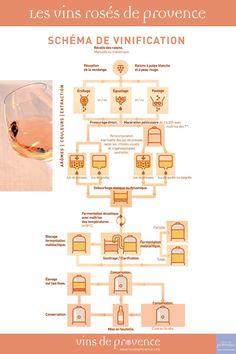 Vins rosés de Provence - Schéma de vinification - Cuisine et vins