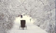 Winter in Ohio, USA's Amish country Amish Country Ohio, Amish Family, Snow Scenes, Winter Scenes, Holmes County, Amish Culture, Amish Community, Winter Magic, Winter Snow