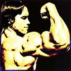 Splite routine sistema P.O.F. da 5 giorni per aumento massa muscolare