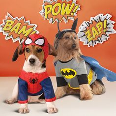 Take a look at the The Canine Costume Shop event on zulily today!