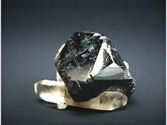 ビクスビ石(Bixbyite)    Topaz Mountain,Thomas Range,Juab County,Utah,USA (Mn,Fe)2O3 標本の幅約1.7cm  大きなビクスビ石の結晶に両錐のトパーズが付いている珍しい標本です。