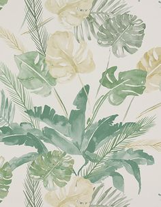 Wallpaper Design 'Jungle' reference 4800021 metres x A stunning large scale leaf and fern design on wallpaper, in a subtle beige and green colour combination. This wallpaper is washable, with good light resistance and strippable. Botanical Wallpaper, Watercolor Wallpaper, Botanical Prints, Watercolor Flowers, Floral Prints, Tropical Prints, Paper Moon, Jungle Wallpaper, Bathroom Mural