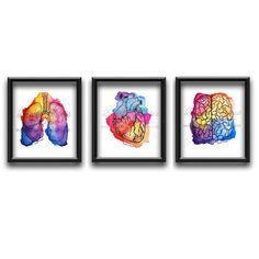 Anatomy Artwork Gift For Doctor Medical Artwork Gift For