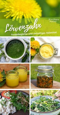 Source by kostbarenatur The dandelion has almost everything to offer! Leaves for salad and tea, flowers for delicious syrup and roots as vegetables or even as a coffee substitute! Dandelion Uses, Coffee Substitute, Witch Herbs, Edible Wild Plants, Autumn Garden, Container Gardening, Vegetable Gardening, Natural Remedies, Herbalism
