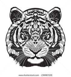Tiger Head Stock Photos, Images, & Pictures | Shutterstock