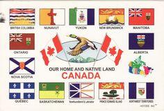Provincial Flags of Canada I Am Canadian, Canadian History, Canadian Memes, Canadian Things, Canadian Provincial Flags, Canada 150, Northwest Territories, Newfoundland And Labrador, Flags Of The World