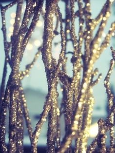Sparkle spray paint branches and put in a vase. Great for Christmas and the winter season.