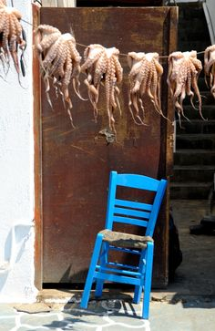 Octopus hanging over a blue chair in Pharos, Greece