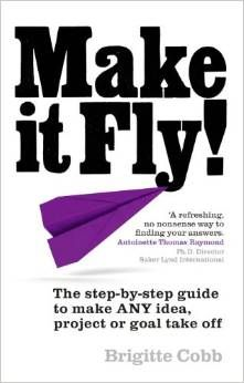 A book review of Make it Fly, the book about managing projects for people who aren't project managers. A practical and interesting read!