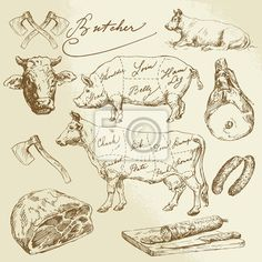 pork and beef cuts - hand drawn set by Canicula, via Shutterstock Koch Tattoo, Carnicerias Ideas, Craft Ideas, Pictogram, Vector Art, Vintage World Maps, How To Draw Hands, Royalty Free Stock Photos, Tattoo