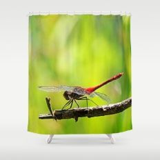 Free Worldwide Shipping on Everything + 20% Off Everything    PLEASE USE THIS LINK:  https://society6.com/pirminnohr?promo=744Z2ZQ2XVTT    Promotion expires April 9, 2017 at Midnight Pacific Time.    MM - RED DRAGON FLY Shower Curtain