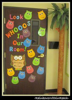 Classroom Door on Owl Theme w DIY Palm Tree via RainbowsWithinReach