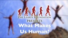 Research related to human origins. #Anthropology