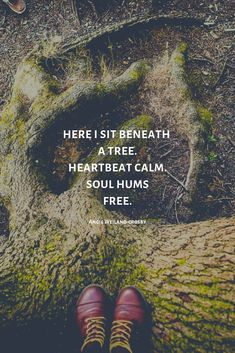 Tree quotes nature wisdom 19 ideas for 2019 Calm Quotes, Soul Quotes, Lofoten, Roots Quotes, Forest Quotes, Mountain Quotes, Tree Quotes, Quotes About Trees, Summer Nature Photography