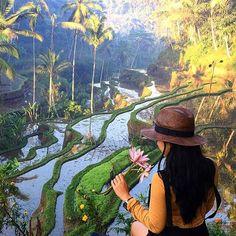 Morning view from Tegalalang Rice Field, Gianyar Bali. #islandlife #defineyourlifestyle