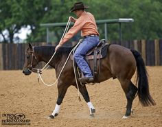 Riding Exercise #3: One Rein Stops  Goal:To be able to slide your hand down one rein and flex the horse's head so that he stops moving his feet and softens at all three gaits with no resistance.  More about the exercise: https://www.downunderhorsemanship.com/Store/Product/MEDIA/D/252/