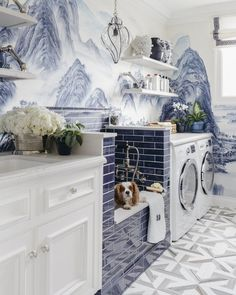 Not exactly minimal but would love to have a dog bath setup in the laundry room!