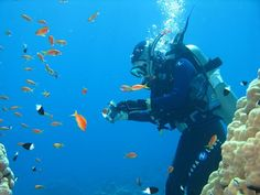 Diving on Red Sea. Egypt