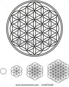 Buy Flower Of Life Development by PeterHermesFurian on GraphicRiver. development of Flower of Life from a single circle to a complex symbol Sacred Geometry Symbols, Sacred Geometry Tattoo, Simple Mandala Tattoo, Mandala Art, Flower Of Life Tattoo, Life Flower, Flower Of Life Pattern, Flower Symbol, Seed Of Life