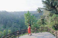 I see trees of green  #explorebali #explorenature #greens #travelbali #balipulina #ubud #livefolk #liveauthentic #vsco #vscophile #vscocam by amandawidjaya