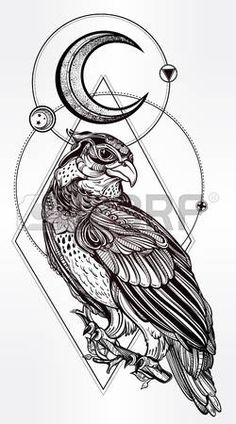 occult pagan: Detailed hand drawn bird of prey with sacred geometry moon.