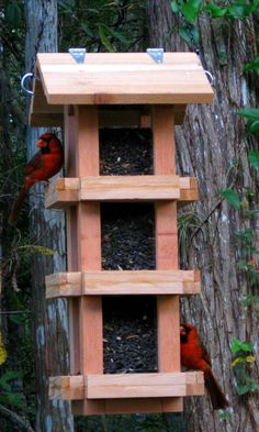 Decorative Cedar Wood Cardinal Bird Feeder - Handmade In The Usa - Bird Seed…