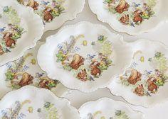 ENESCO Woodland Cuties China Plates Set of 8 by SunshineSurprises