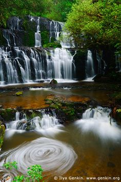 Purakaunui Falls, The Catlins, South Island, New Zealand. There have been many pictures taken of the Purakaunui Falls at Catlins, along the Southern Scenic Route in Otago, New Zealand, over the years and they are now considered to be the most photographed waterfalls on the South and North Islands of New Zealand.- been here