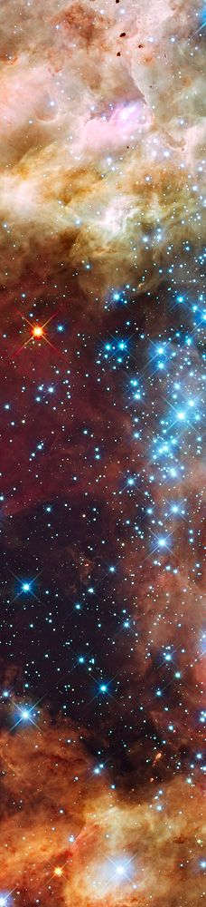 30 Doradus in Ultraviolet, Visible, and Red Light ~  (also known as the Tarantula Nebula or NGC 2070) Originally thought to be a star, but in 1751 Nicolas Louis de Lacaille recognized it as a nebula. Its luminosity is so great that if it were as close to Earth as the Orion Nebula, it would cast shadows. It is the most active starburst region in the Local Group of galaxies. The closest supernova observed since the invention of the telescope, Supernova 1987A, occurred in the outskirts of NGC…