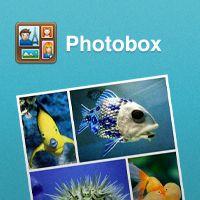 modi diversi per mostrare foto da condividere sul web