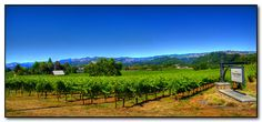 Spend an extended weekend touring California's wine country.