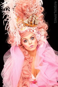 A work of art!  http://www.etsy.com/listing/87181681/sale-marie-antoinette-style-headdress?ref=sr_gallery_4&ga_search_submit=&ga_search_query=marie+antoinette+wig&ga_view_type=gallery&ga_search_type=handmade&ga_facet=handmade