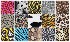 jungle print fabric - Google Search