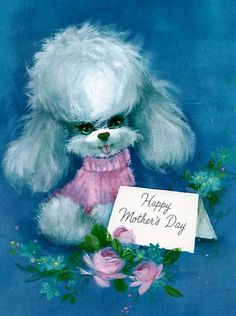 Image result for poodle happy mothers day