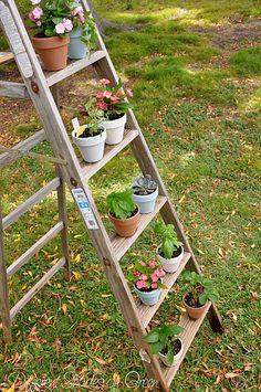 another vertical gardening idea