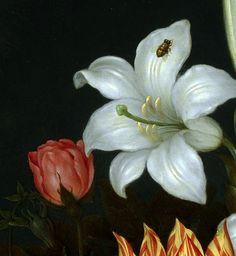 nataliakoptseva:  Ambrosius Bosschaert the Elder - A Still Life of Flowers in a Wan-Li Vase Detail