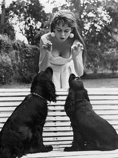 BB and her dogs