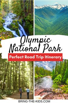 Are you ready to plan the perfect trip to Olympic National Park? With so many amazing beaches, mountains and even rainforest, learn how to pack everything in during your visit. Road Trip Hacks, Road Trips, National Parks Usa, Olympic National Park Hikes, Perfect Road Trip, State Parks, Wa State, Outdoor Travel, Travel Usa
