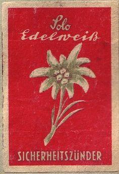 edelweiss - bless my homeland forever!