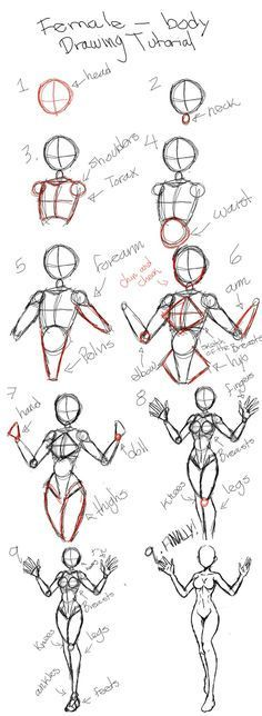 Body Drawing Tutorial, Sketches Tutorial, Body Tutorial, Manga Tutorial, Art Drawings Sketches Simple, Pencil Art Drawings, Easy Drawings, Body Sketches, Art Inspiration Drawing