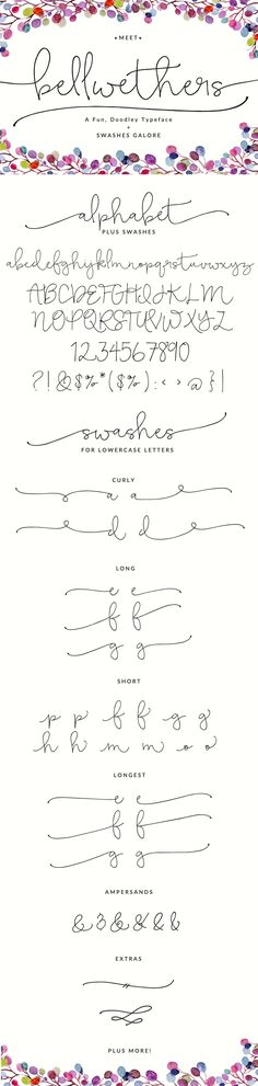 Bellwethers Font by abaldelomar on @creativemarket