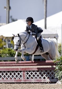 Small Pony Hunter at the #WinterEquestrianFestival | Wellington, Florida |  Deborah Kalas Equestrian Photography