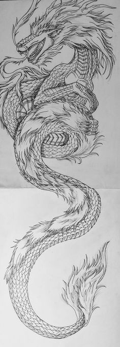 Next Post Previous Post Chinese Dragon Chinesischer Drache Next Post Previous Post Chinese Dragon Drawing, Dragon Tattoo Drawing, Tattoo Drawings, Body Art Tattoos, Sleeve Tattoos, Small Tattoos, Dragon Drawings, Tattoo Art, Dragon Tattoo Back