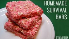 Homemade Survival Bars | Recipe and Instructions