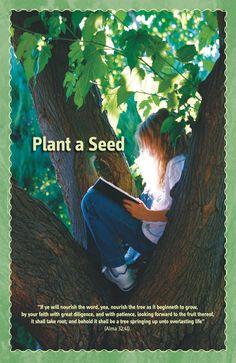 Plant a Seed - Friend Aug.