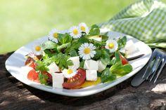 Sedmikráska chudobka může ozdobit koláč, ale také ulevit při horečce! Feta, Panna Cotta, Cheese, Ethnic Recipes, Easy Summer Salads, Dried Tomatoes, Eat Lunch, Easy Meals, Recipies